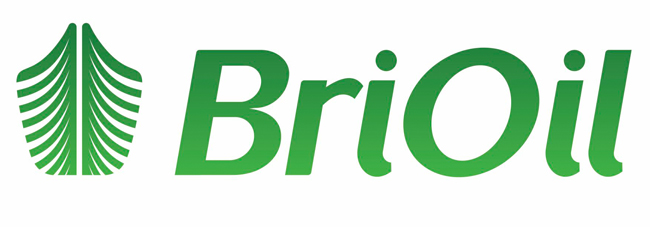 BRIO GROUP : Logistics & Facility Management